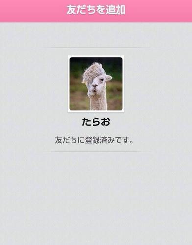 画像①.jpg