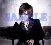 gb_sample1.jpg