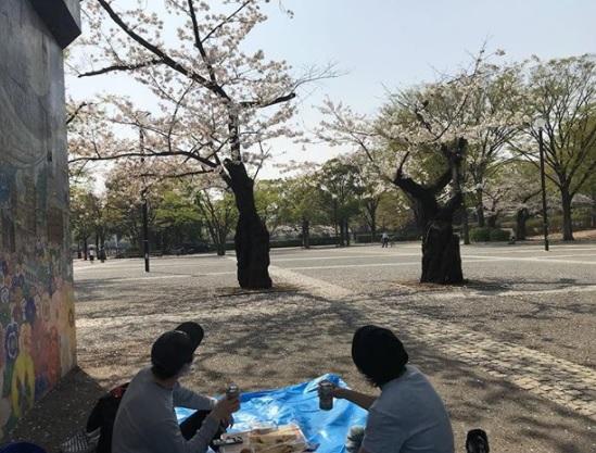 喜矢武さん塩田康平さんと渋いお花見…( ´ ▽ ` )ノ